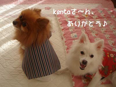 kentaさん、ありがと♪
