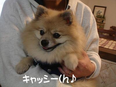 キャッシー君☆