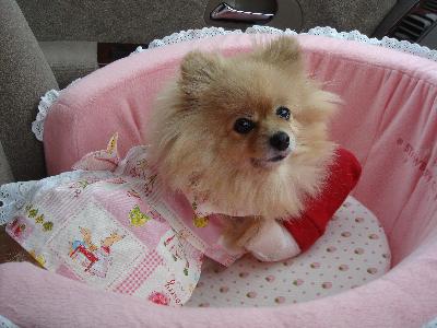 キャッシーママ、お誕生日おめでとう!!!