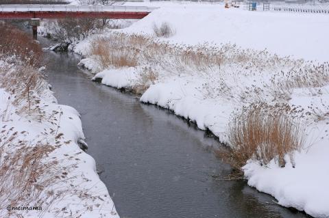 川の上は寒かったです(@_@;)