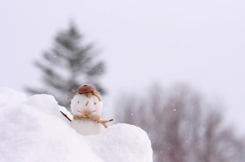 札幌の雪ちゃん♪