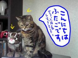 Image1251.jpg