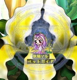 妖精マルさん・・・