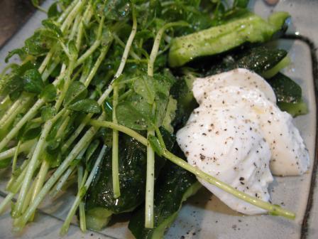 豆苗ときゅうりとモッツァレラチーズ