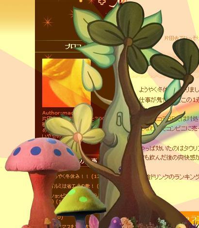 kamo_blog.jpg