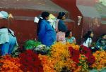 vendiendo flores