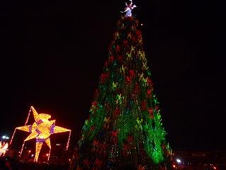 zocalo navidad 2