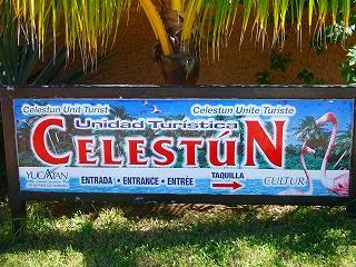 celestun