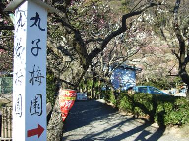 丸子梅園の入り口