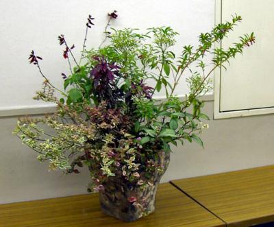 CIMG4669.2007.10.2-2.jpg