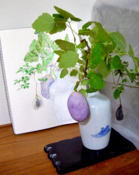 CIMG5412.2007.11.2-2.jpg