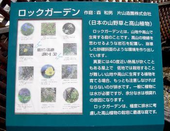 CIMG8904.2007.2.10.jpg