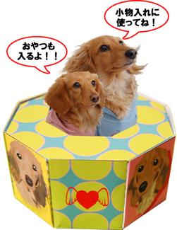 BOX_ME_080224-S1new.jpg