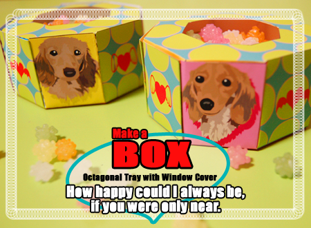 BOX_photo_080224.jpg
