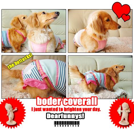 border_coverall-2_080220.jpg