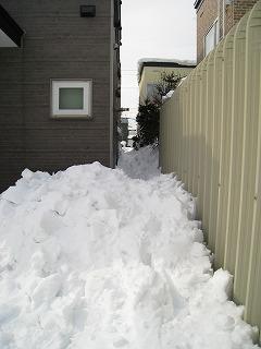 0220雪かき01