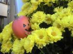 町で見かけた花シリーズ08297