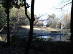 蚕糸の森090101