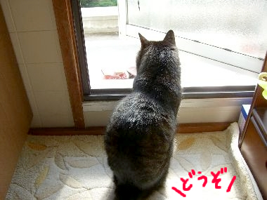 goma_sotoe2.jpg