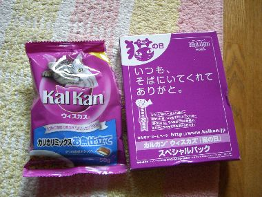 kalkan_present1.jpg