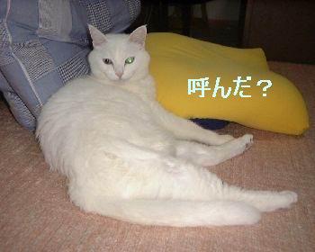 milk_motareru4.jpg