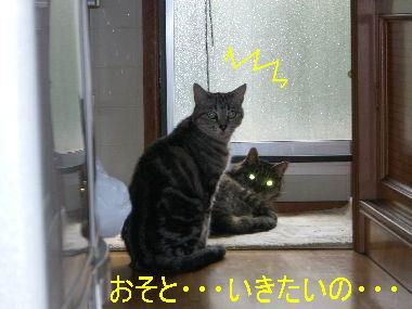 osoto_ikitai2.jpg