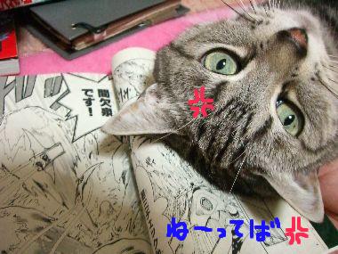 tama_manga3.jpg