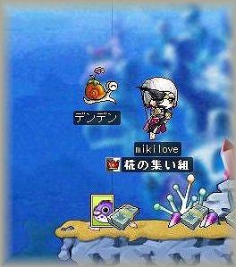 s-Maple0008.jpg