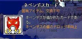 ss-Maple0004.jpg
