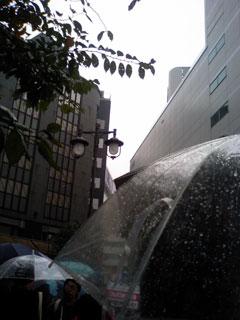 20061111_04.jpg