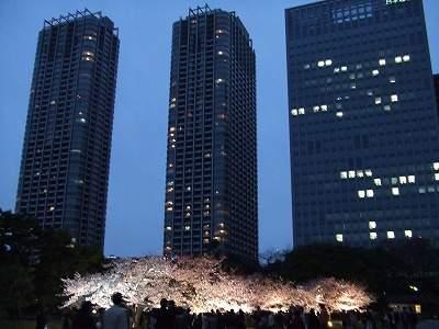 0904sakurahama2.jpg