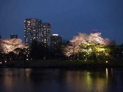 0904sakurahama3.jpg