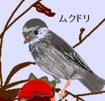 20060510mu.jpg