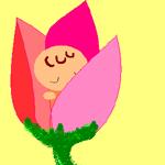 Tulipa.jpg