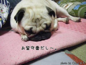 眠くなってきた。