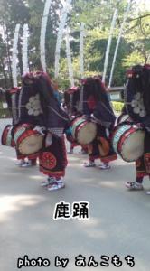 無形文化財・鹿踊。