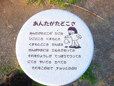 STC_6106.jpg