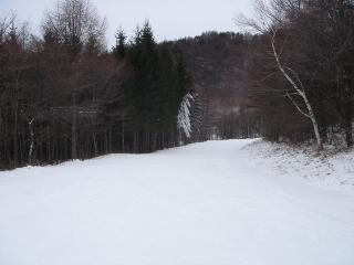 DSC02815.jpg