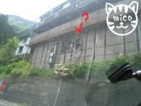 0505徳島6