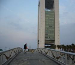 ポートタワーと橋