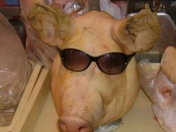 豚ちゃんです。。。
