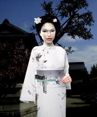Lara in JAPAN