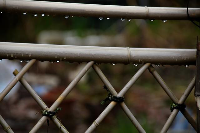 雨の妻籠2