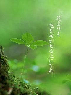 花よりも花を咲かせる土になれ