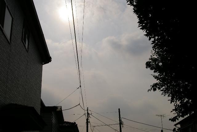 太陽の意思
