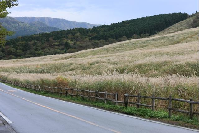 20081026_07_sengokubara.jpg