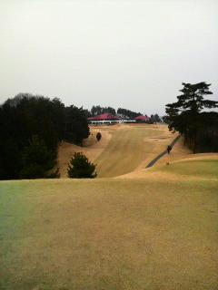 皐月ゴルフ3