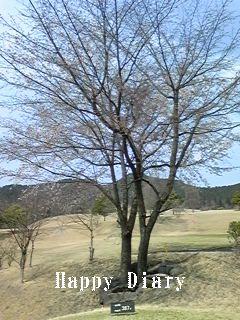 4月12日のゴルフ