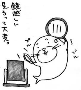 20070520034.jpg