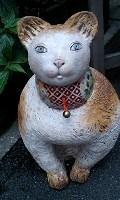 銀座夏野の猫